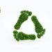 sostenibilidad-merkal